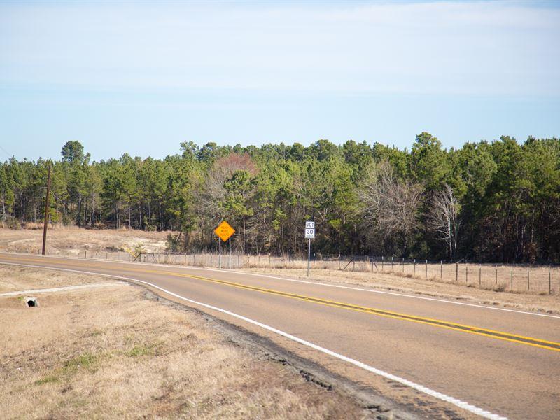 6 Ac Tract 4 Dawson Hill : Huntsville : Walker County : Texas