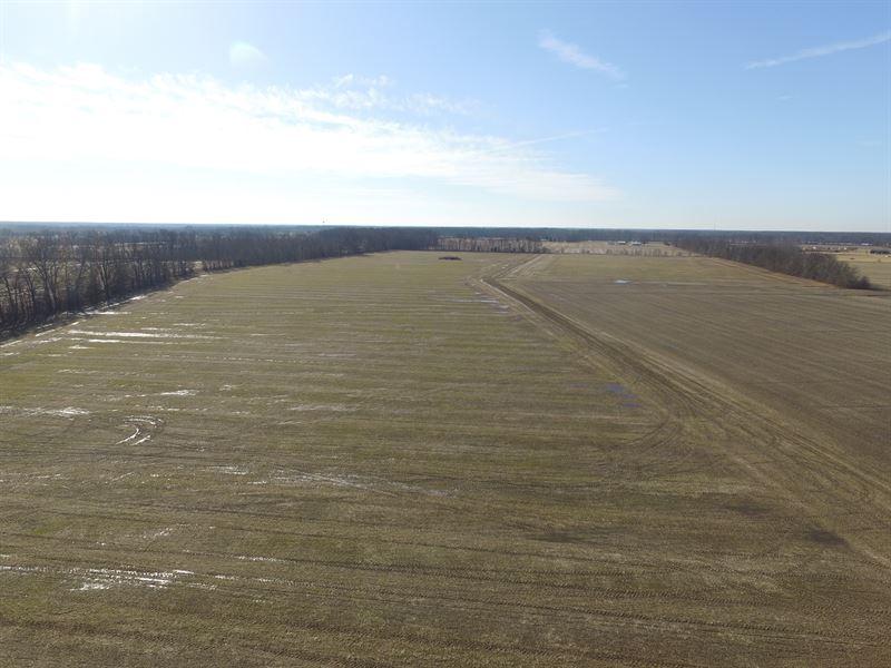 411 Acres Vacant Land Clermont Co. : Goshen : Clermont County : Ohio