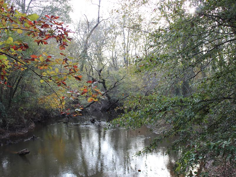 Incredible Hunting Property : Macon : Bibb County : Georgia
