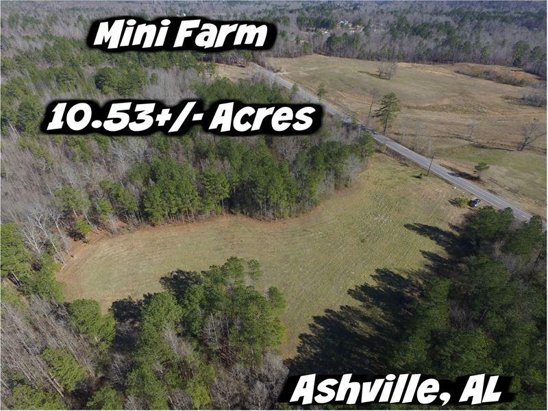 Mini Farm Opportunity : Ashville : Saint Clair County : Alabama