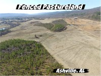 Fenced Pasture - Potential Pond : Ashville : Saint Clair County : Alabama