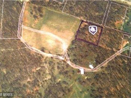 Level Wooded Lot : Swanton : Garrett County : Maryland