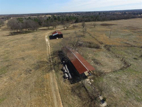 71 Acre Ranch : Quitman : Wood County : Texas
