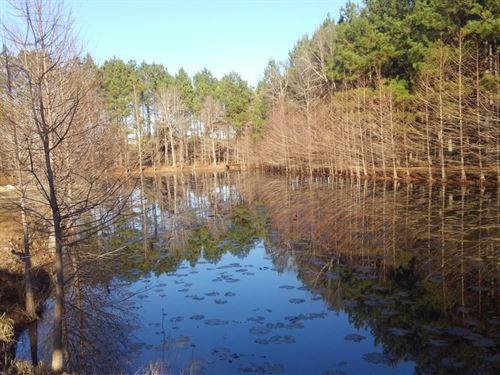 Cypress Roost : Marianna : Jackson County : Florida
