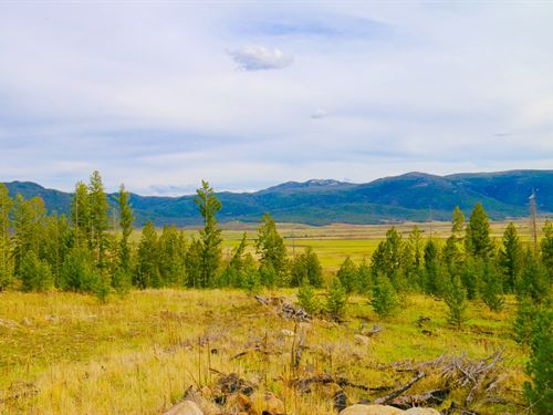 Elk Park 160 Hunting Ranch : Butte : Silver Bow County : Montana