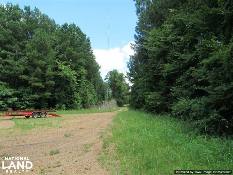 Fantastic 765 Acre Hunting & Recrea : Farmhaven : Madison County : Mississippi