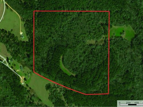 Recreational Deer Turkey Hunting La : Bassfield : Jefferson Davis County : Mississippi