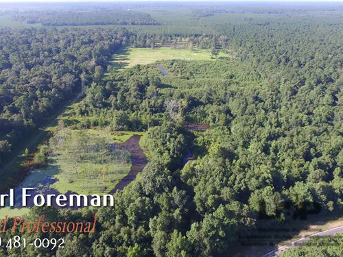 Land For Sale In Evangeline Parish : Pine Prairie : Evangeline Parish : Louisiana