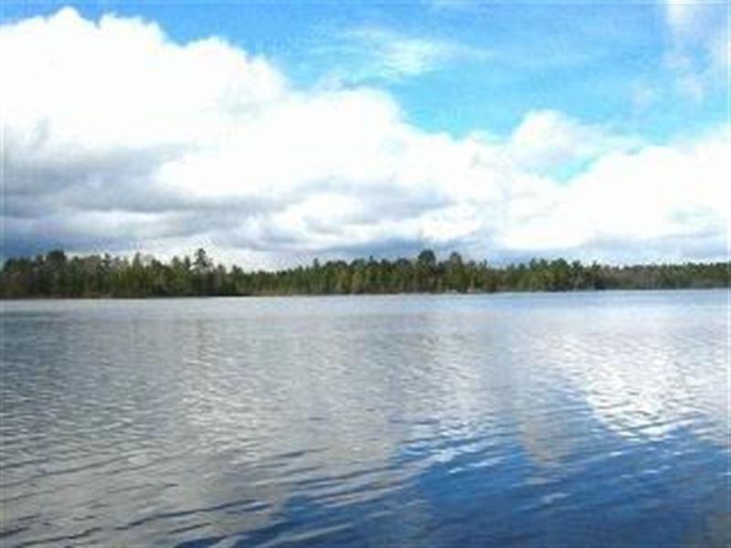 Lakefront & Acreage On 2 Lake Chain : Land O Lakes : Vilas County : Wisconsin