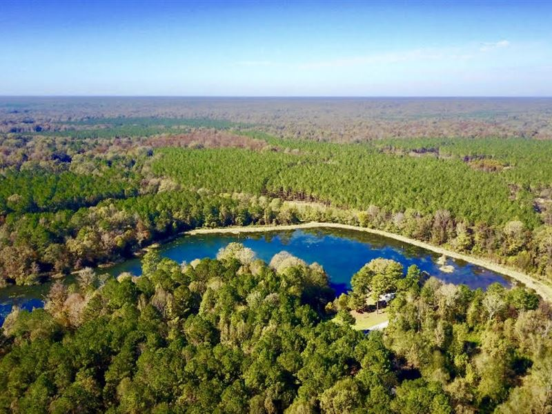 Beautiful Sportsman's Paradise : Woodville : Wilkinson County : Mississippi