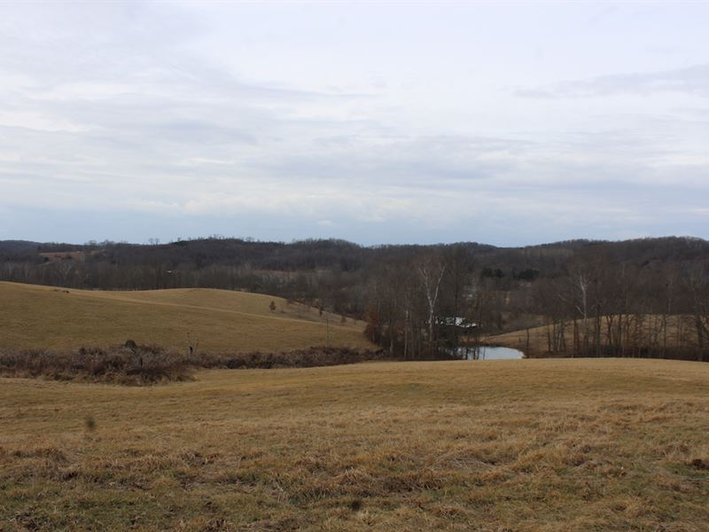 Ramey Rd, 99 Acres : Jackson : Jackson County : Ohio