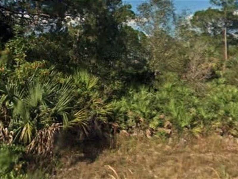 Lee County, Fl $24,999 Neg : Lehigh Acres : Lee County : Florida