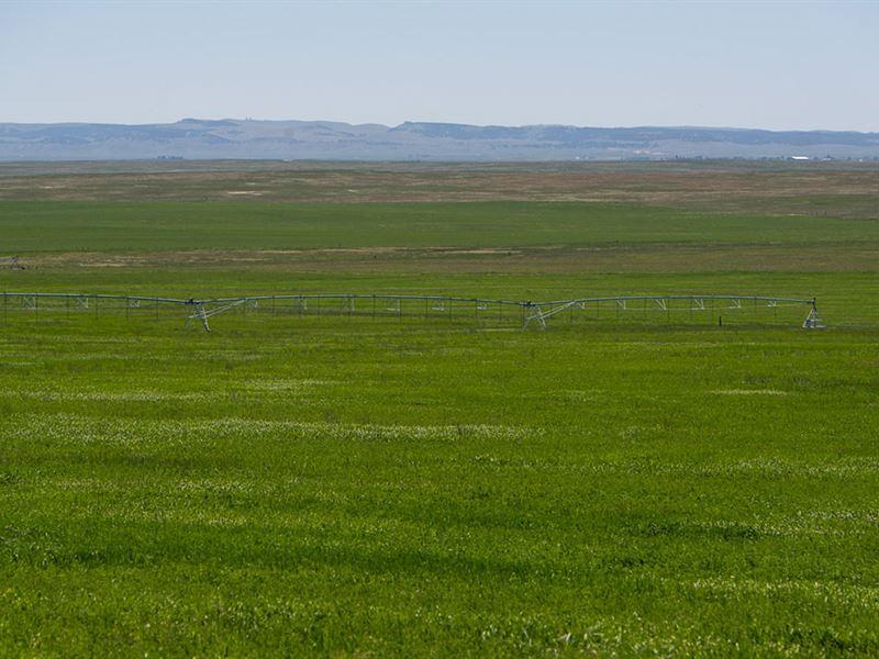 Kremers Pivot : Lusk : Niobrara County : Wyoming