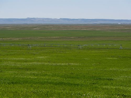 Kremers Pivot : Lusk : Niobrara County : Wyoming