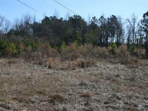 2 OR 3 Gathered : Shannon : Hoke County : North Carolina