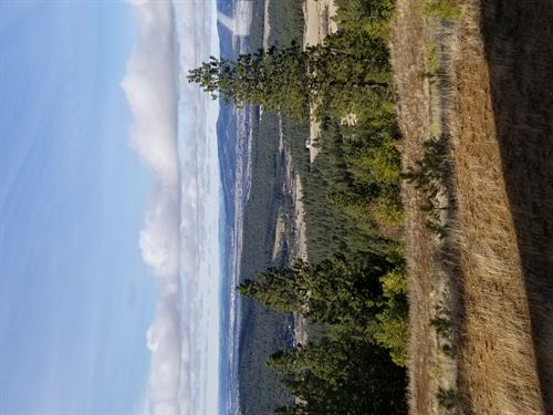 Big Rock 2nd 20Ac : Post Falls : Kootenai County : Idaho