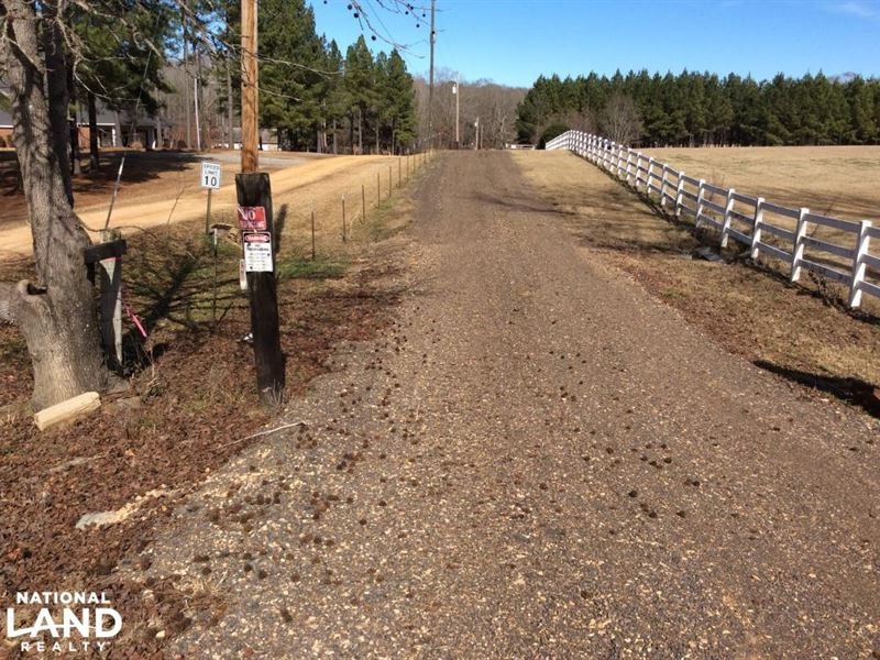 Reid 59.6 Ac, Mini Ranch/Farm With : Terry : Hinds County : Mississippi