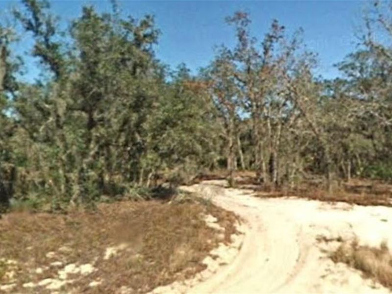 Highlands County, Fl $47,500 Neg : Avon Park : Highlands County : Florida
