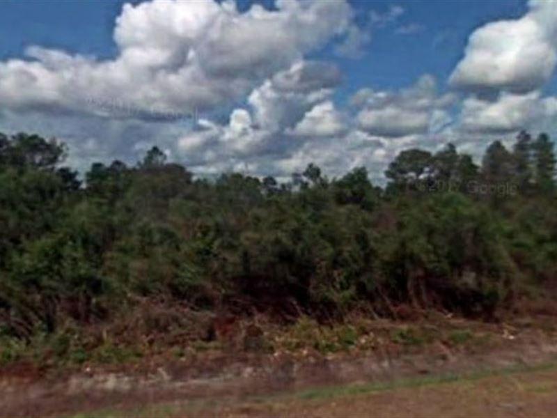 Polk County, Fl $6,000 Neg : Frostproof : Polk County : Florida