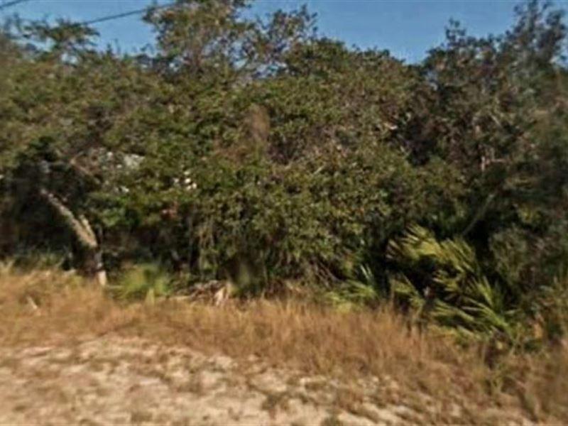 Highlands County, Fl $20,000 Neg : Lake Placid : Highlands County : Florida