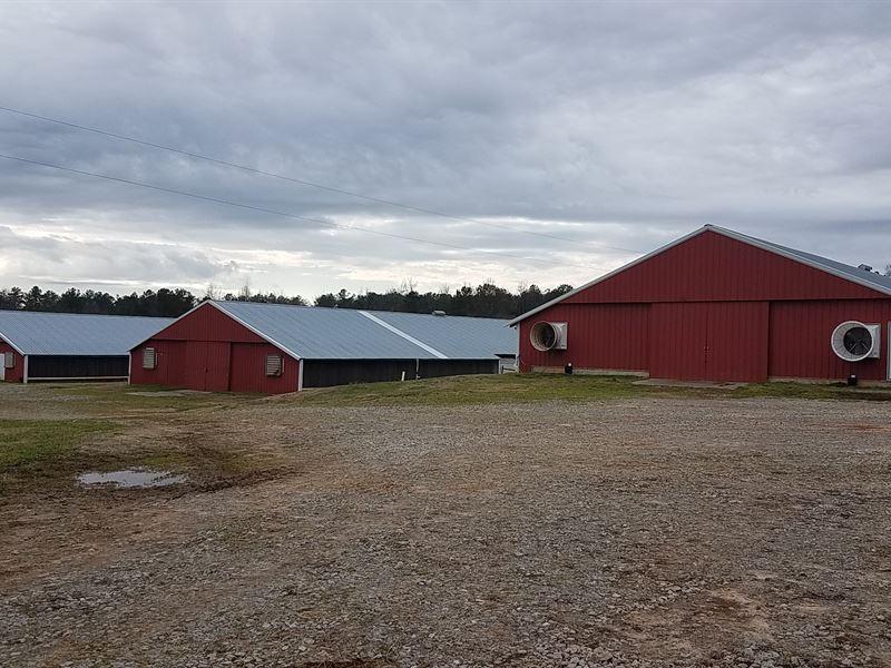 3 House Broiler Farm In Carrollton : Carrollton : Carroll County : Georgia