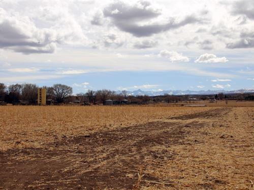 Willis Spring Creek Farm : Montrose : Colorado