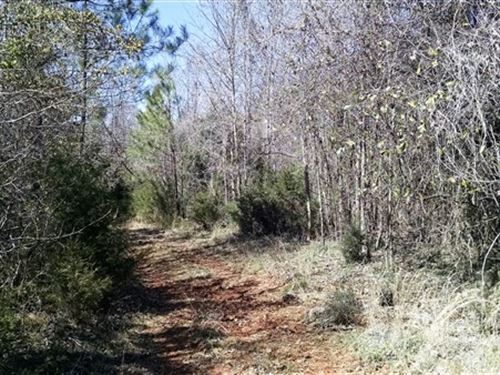 56 Acres - Fairfield County, Sc : Winnsboro : Fairfield County : South Carolina