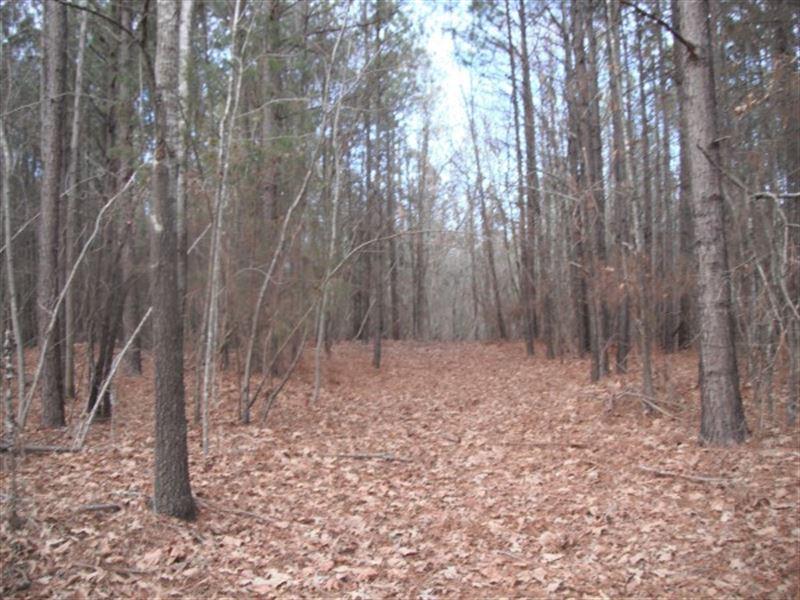 57 Acres - Chester County, Sc : Richburg : Chester County : South Carolina