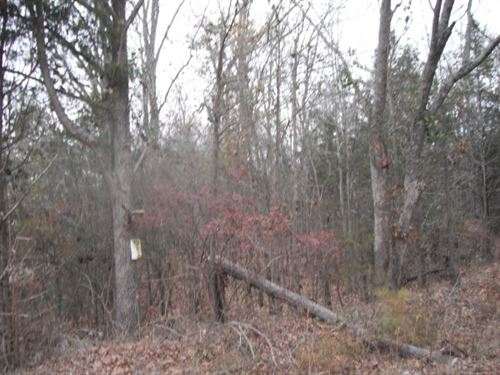 57 Acres - Chester County, Sc : Richburg : Chester County : South Carolina
