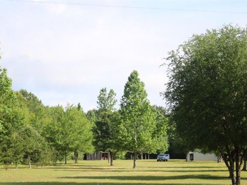 10 Acres In Perry County In Brookly : Brooklyn : Perry County : Mississippi