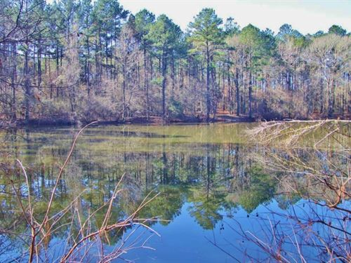 51.85 Acres For Sale Smithdale, Ami : Smithdale : Amite County : Mississippi