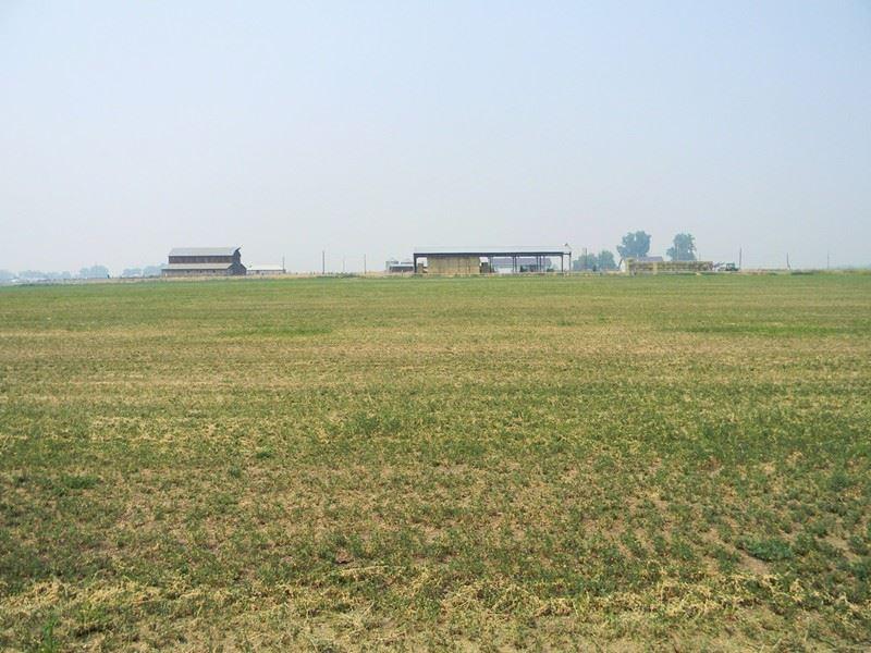 Established Alfalfa Farm, 2 Homes : Klamath Falls : Klamath County : Oregon
