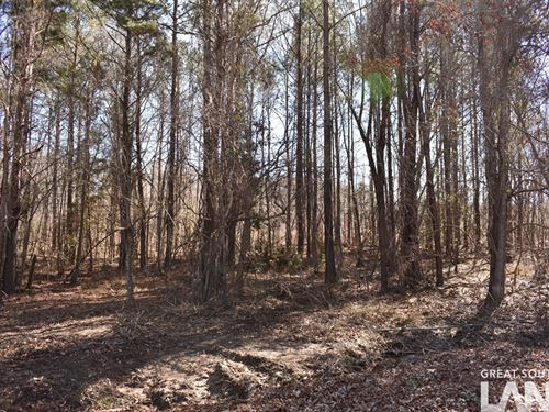 66-085A Riverview Estates Lot 4 : Camden : Wilcox County : Alabama