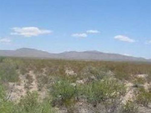 .14 Acres In Salt Flat, TX : Salt Flat : Hudspeth County : Texas