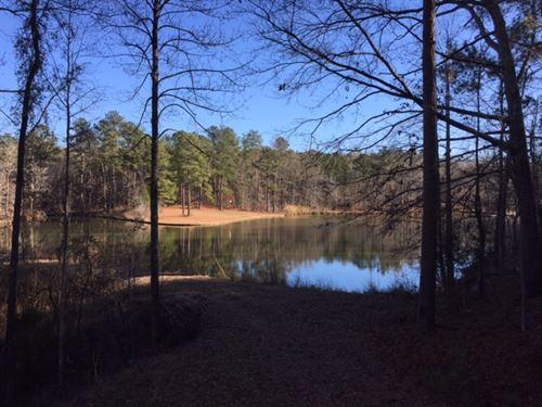 Unlike Anything : Tignall : Lincoln County : Georgia