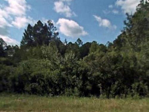 Holmes County, Fl $7,500 Neg : Bonifay : Holmes County : Florida