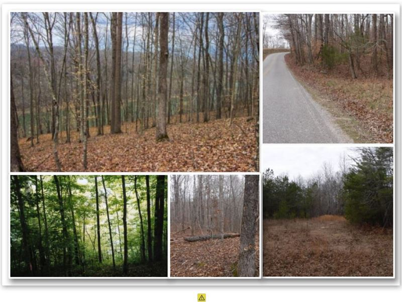 63.81Ac W/Views Of Center Hill Lake : Smithville : Dekalb County : Tennessee