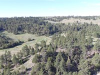 Sawmill Ranch : Clearmont : Sheridan County : Wyoming