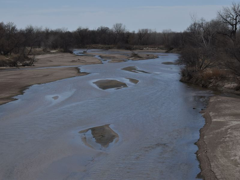 South Platte Waterfowl And Wildlife : Sedgwick : Sedgwick County : Colorado