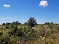 Country Home Site 10 Acres : Punta Gorda : Charlotte County : Florida