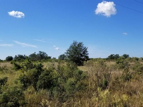 Country Home Site 10 Acres : Punta Gorda : Charlotte County : Florida