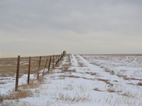 Grover Crp Land For Sale : Grover : Weld County : Colorado