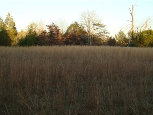29 Acres - Chester County, Sc : Chester : South Carolina
