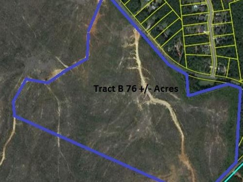 76 Acres - Richland County, Sc : Blythewood : Richland County : South Carolina