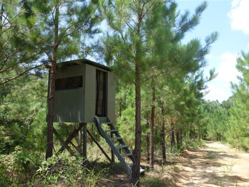 Reduced Over $25,000 : Silverstreet : Newberry County : South Carolina