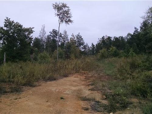 67 Acres - Fairfield County, Sc : White Oak : Fairfield County : South Carolina
