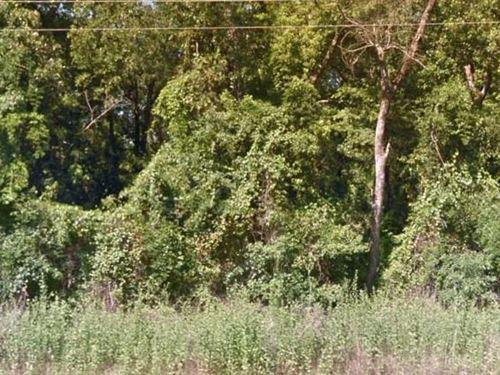 Marion County, Tx $20,000 Neg : Avinger : Marion County : Texas