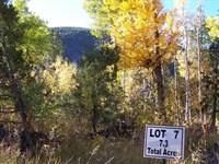 9442747 - Spectacular Mountain Sett : Salida : Chaffee County : Colorado