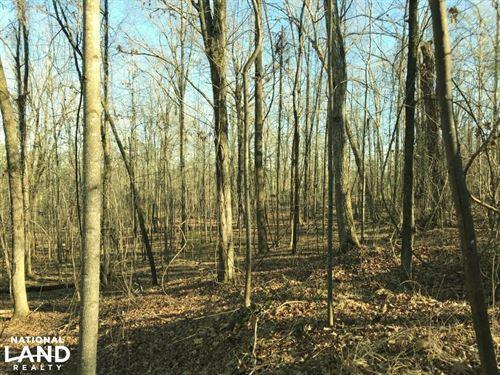 Martin Road Spur Homesite : Northport : Tuscaloosa County : Alabama