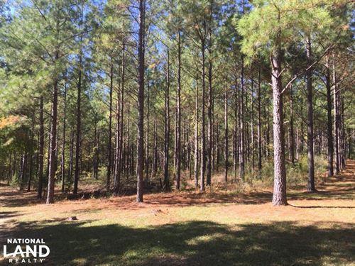 Smallstown Road Homesite : Winnsboro : Fairfield County : South Carolina